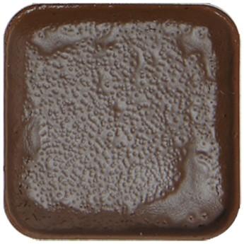 Cocoa 4,5g lihová barva tuhá